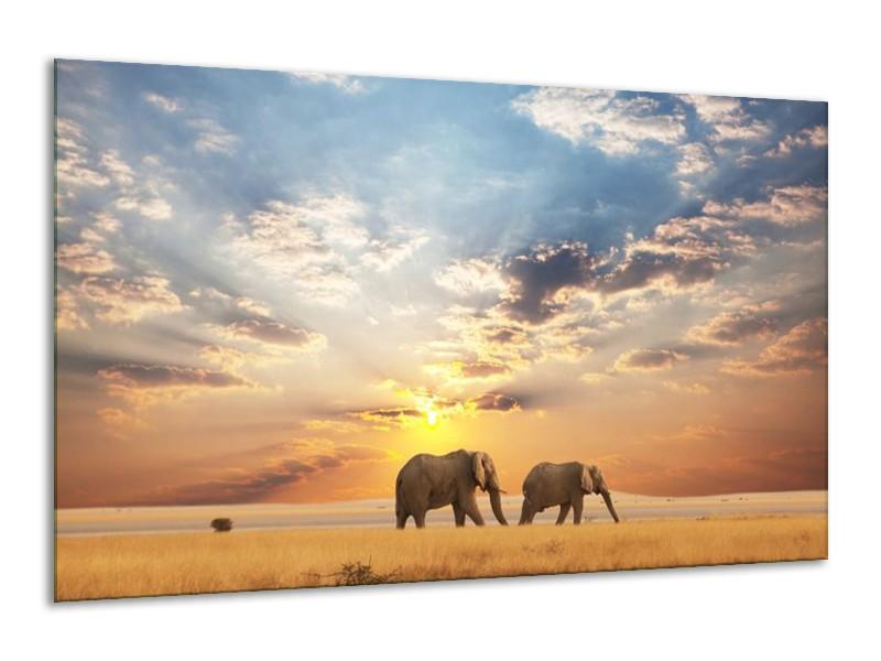 Canvas schilderij Olifant | Grijs, Geel, Blauw | 120x70cm 1Luik
