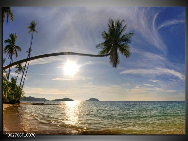 Foto canvas schilderij Natuur | Wit, Geel, Blauw