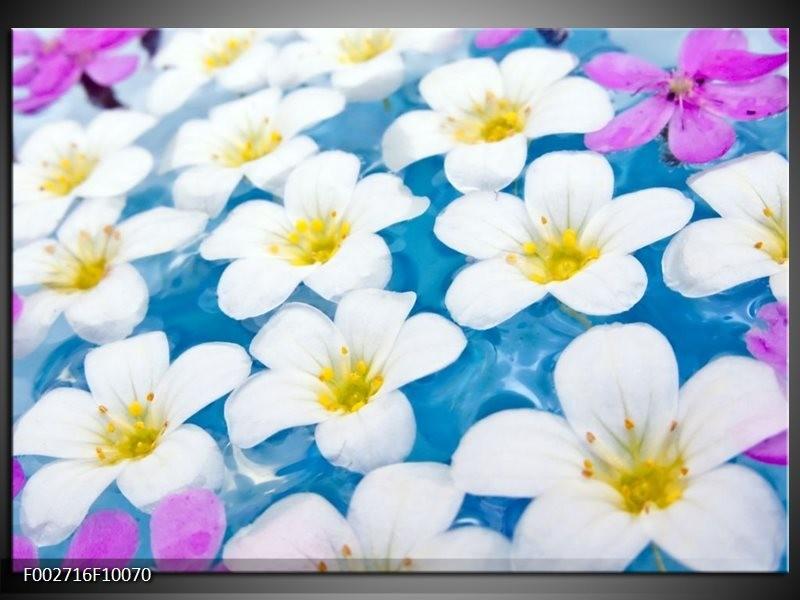 Foto canvas schilderij Bloemen | Blauw, Wit, Geel