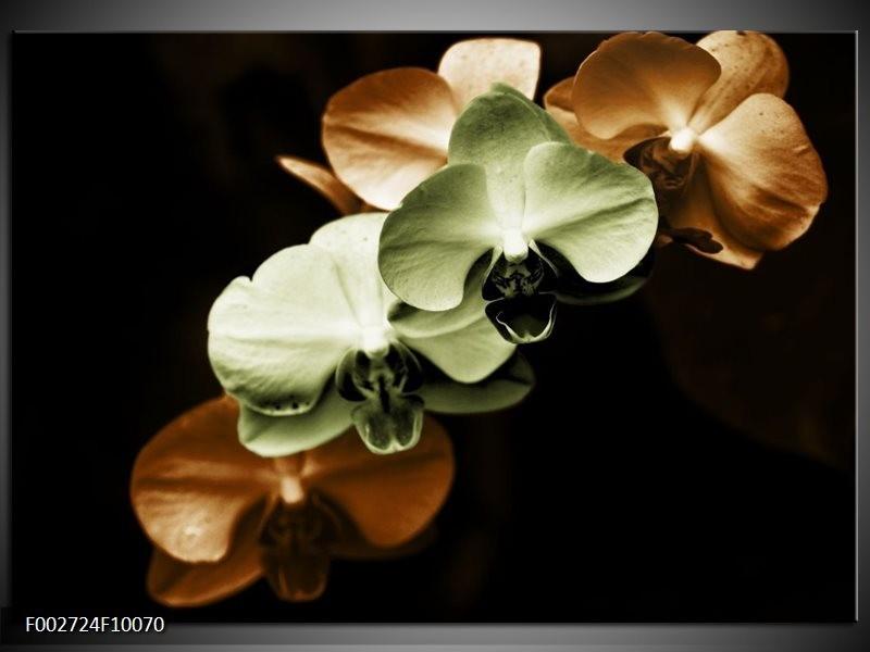 Foto canvas schilderij Orchidee   Groen, Bruin, Zwart