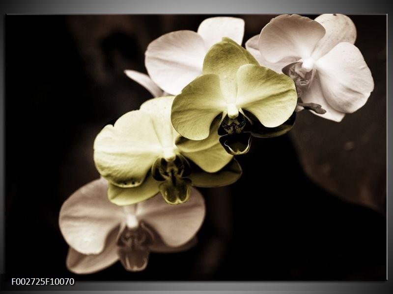 Foto canvas schilderij Orchidee | Groen, Zwart, Grijs