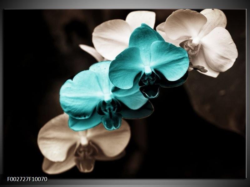 Foto canvas schilderij Orchidee | Blauw, Zwart, Grijs