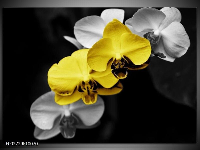 Foto canvas schilderij Orchidee   Geel, Zwart, Grijs
