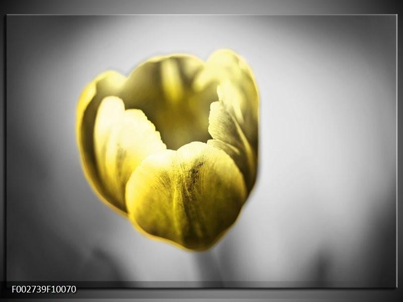 Foto canvas schilderij Tulp | Geel, Wit, Grijs