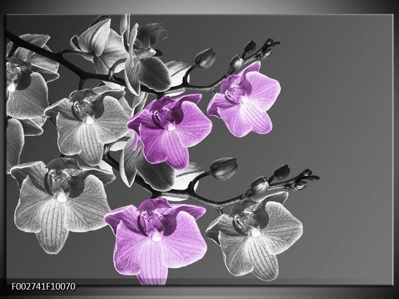 Foto canvas schilderij Orchidee | Grijs, Paars, Zwart