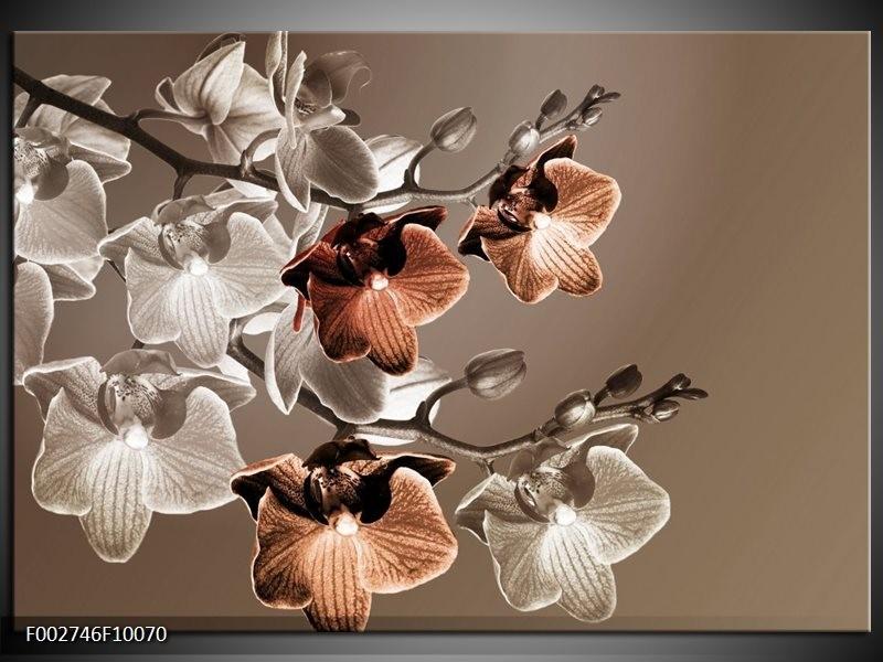 Foto canvas schilderij Orchidee | Grijs, Bruin