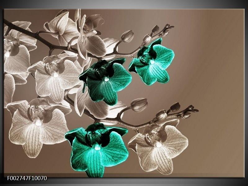 Foto canvas schilderij Orchidee | Groen, Bruin, Grijs