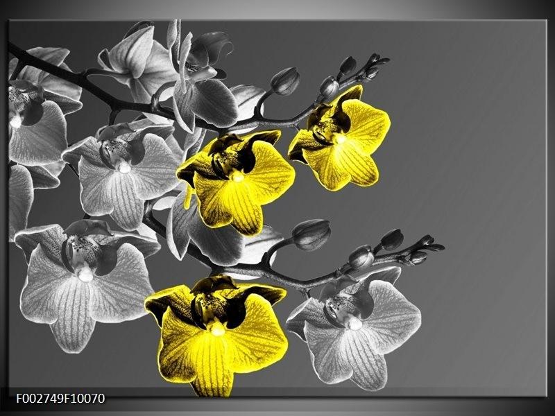 Foto canvas schilderij Orchidee   Zwart, Geel, Grijs