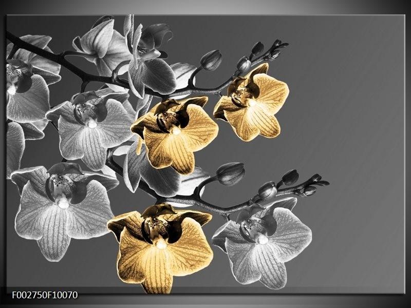 Foto canvas schilderij Orchidee | Zwart, Oranje, Grijs