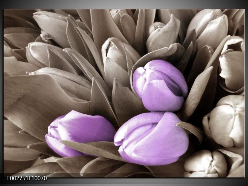 Foto canvas schilderij Orchidee | Paars, Grijs, Bruin