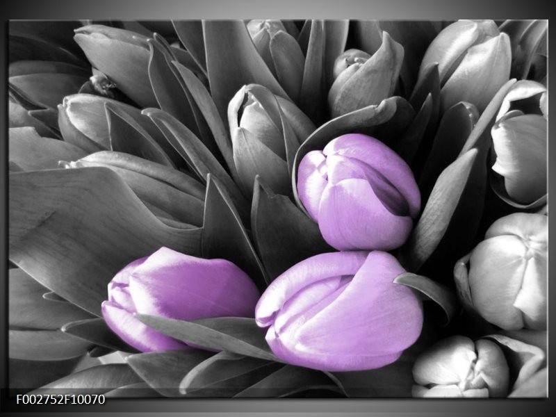 Foto canvas schilderij Orchidee | Paars, Zwart, Grijs