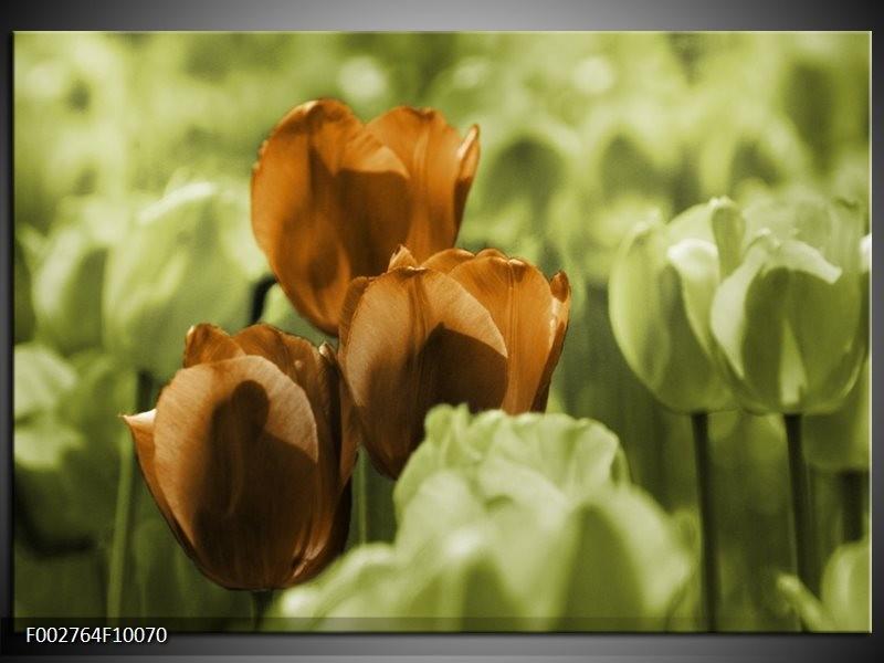 Foto canvas schilderij Tulpen | Bruin, Groen, Zwart