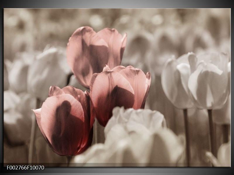 Foto canvas schilderij Tulpen | Bruin, Grijs