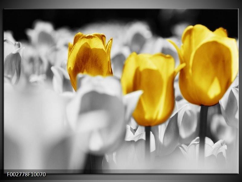 Foto canvas schilderij Tulpen | Geel, Grijs, Wit
