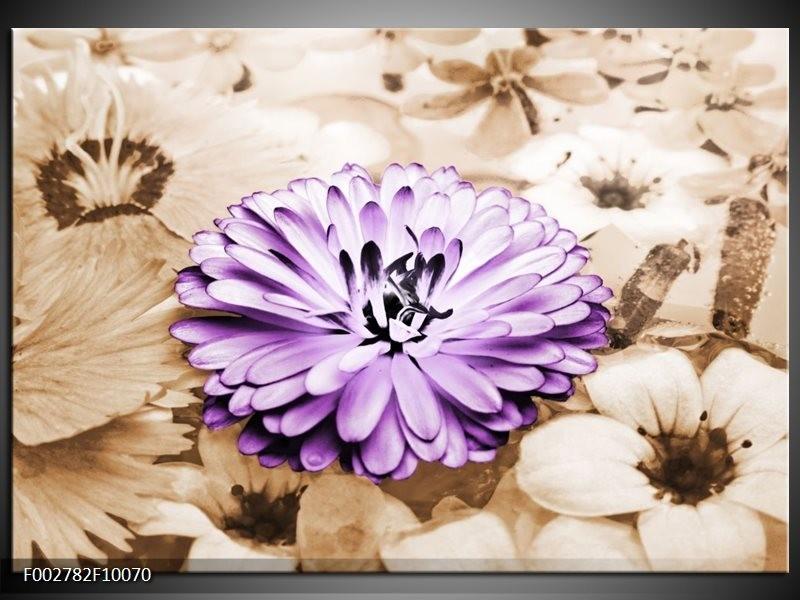 Foto canvas schilderij Bloem | Paars, Bruin
