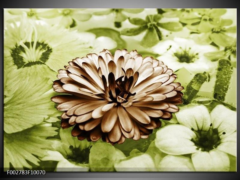 Foto canvas schilderij Bloem | Groen, Bruin