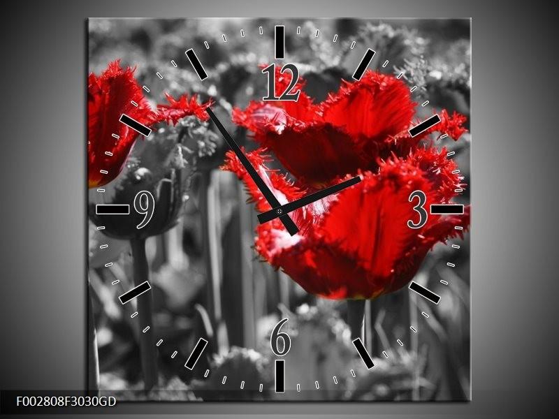 Wandklok op Glas Tulpen | Kleur: Rood, Grijs | F002808CGD