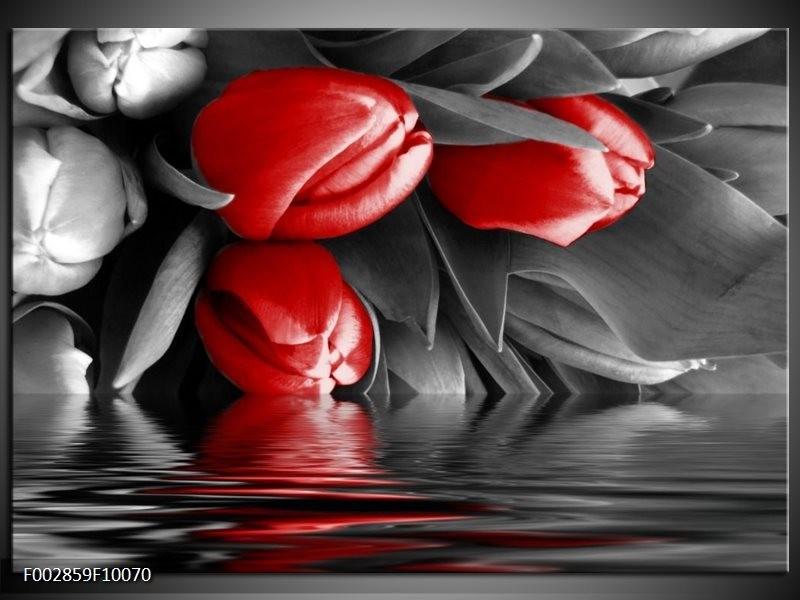 Foto canvas schilderij Tulpen | Rood, Grijs, Zwart