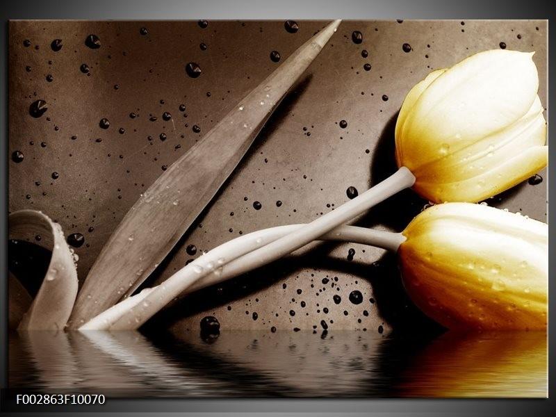 Foto canvas schilderij Tulpen | Geel, Bruin