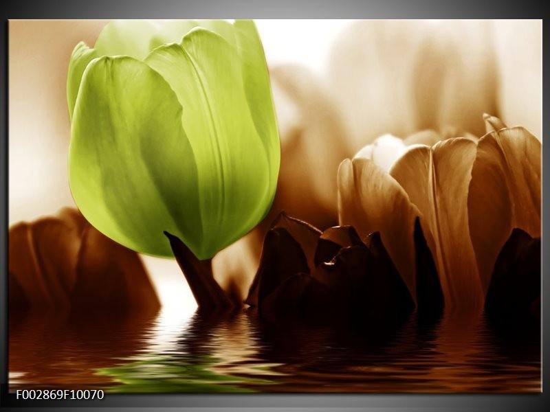 Foto canvas schilderij Tulpen   Groen, Bruin