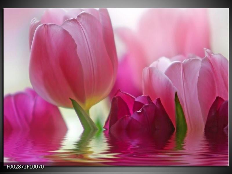 Foto canvas schilderij Tulpen | Roze, Wit, Groen