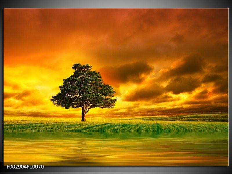 Foto canvas schilderij Natuur | Groen, Bruin, Wit