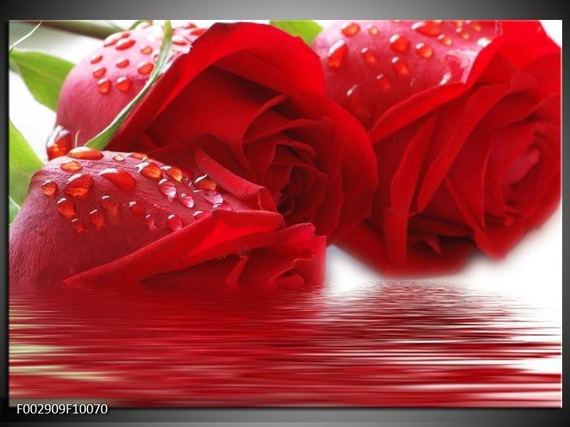 Foto canvas schilderij Roos | Rood, Grijs, Wit