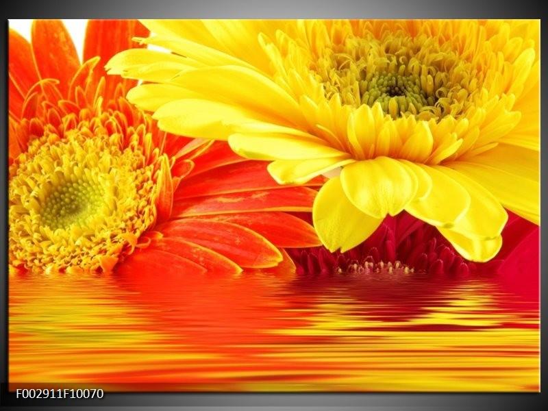 Foto canvas schilderij Gerbera | Geel, Oranje