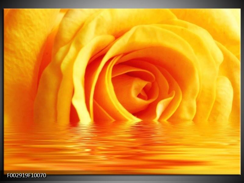 Foto canvas schilderij Roos | Geel