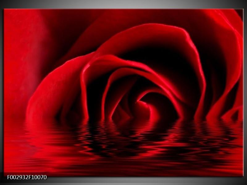 Foto canvas schilderij Roos | Zwart, Rood