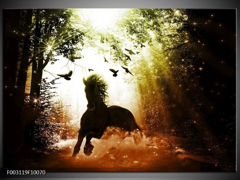 Foto canvas schilderij Paard | Groen, Zwart, Wit