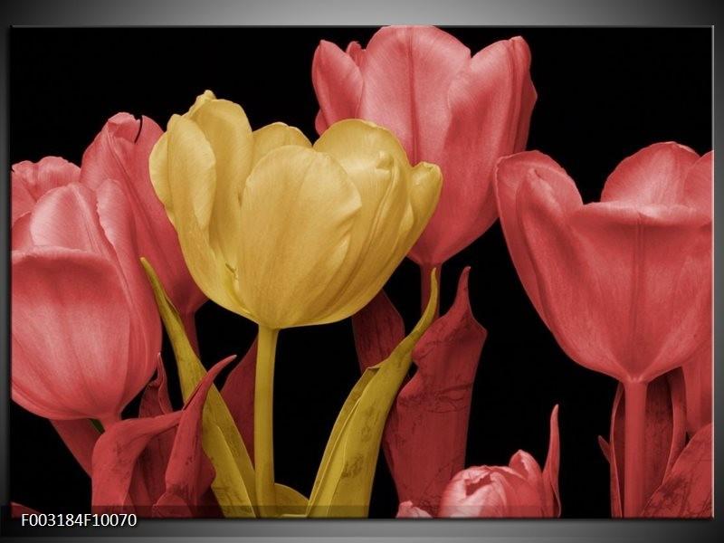 Foto canvas schilderij Tulpen | Geel, Roze, Zwart