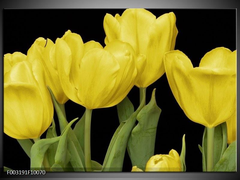 Foto canvas schilderij Tulpen | Geel, Groen, Zwart