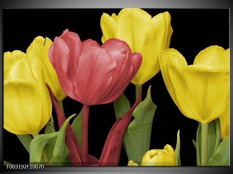 Foto canvas schilderij Tulpen | Roze, Geel, Groen
