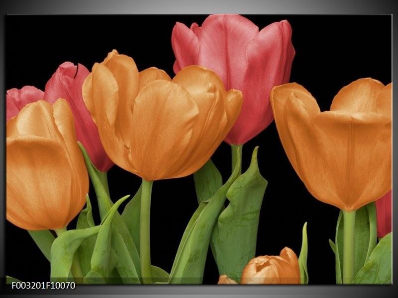 Foto canvas schilderij Tulpen | Oranje, Rood, Groen