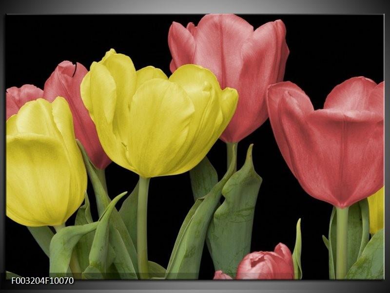 Foto canvas schilderij Tulpen | Geel, Rood, Zwart