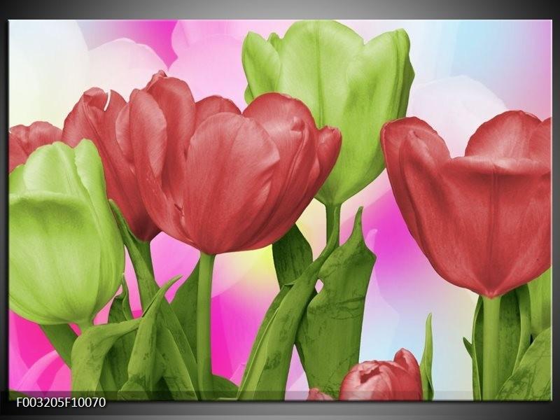Foto canvas schilderij Tulpen | Rood, Groen, Paars