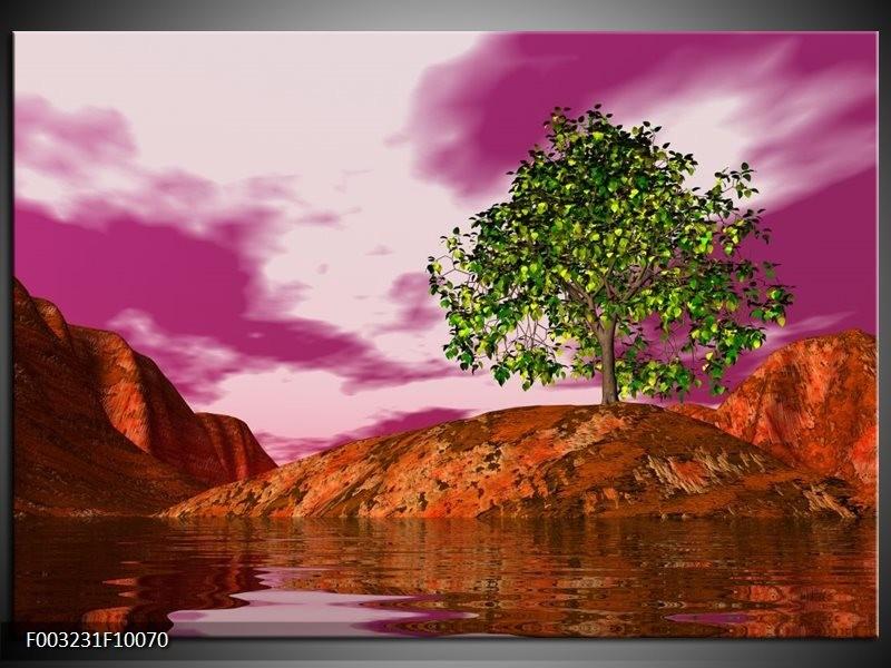 Foto canvas schilderij Natuur | Groen, Paars, Roze