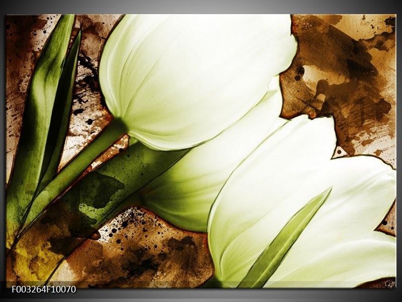 Glas schilderij Tulpen | Groen, Wit, Bruin