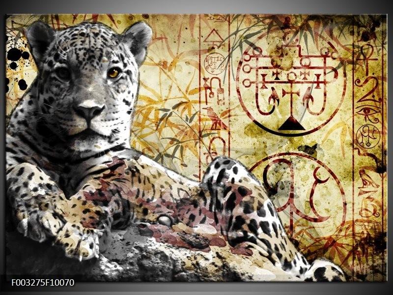 Foto canvas schilderij Dieren | Geel, Grijs, Wit