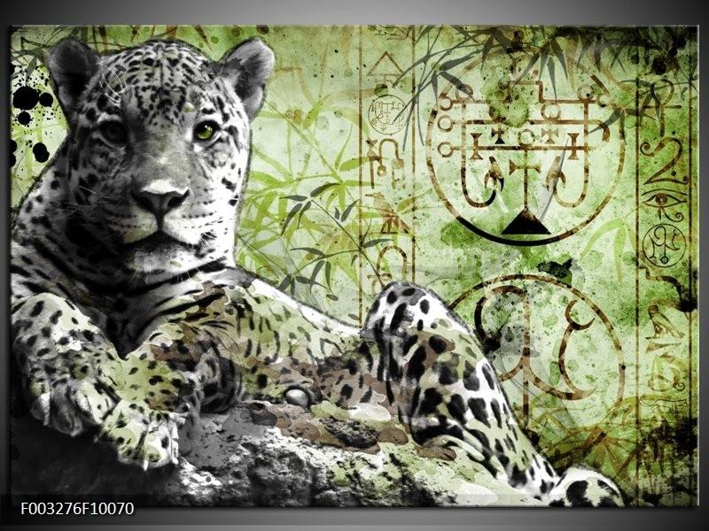 Foto canvas schilderij Dieren | Groen, Zwart, Wit