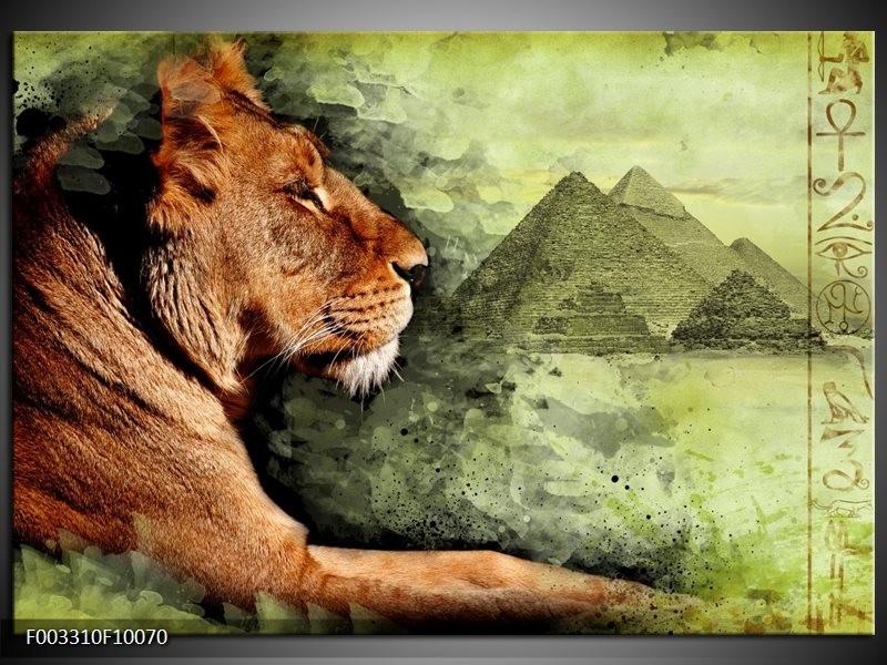 Glas schilderij Leeuw | Bruin, Grijs, Groen