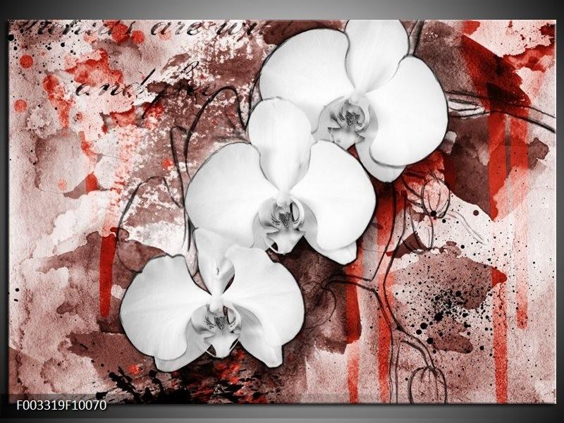 Foto canvas schilderij Orchidee | Wit, Rood