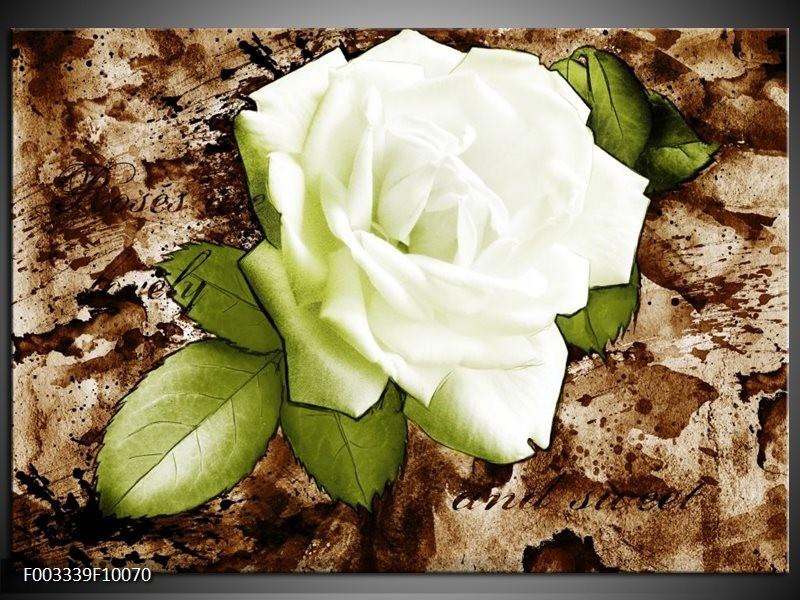 Glas schilderij Roos   Bruin, Wit, Groen