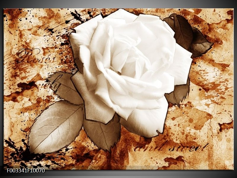 Glas schilderij Roos | Bruin, Wit, Sepia