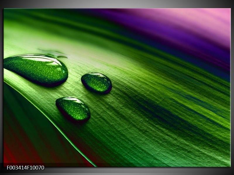 Foto canvas schilderij Druppel | Groen, Wit, Paars