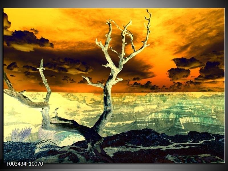 Glas schilderij natuur geel bruin wit groepart for Schilderij natuur