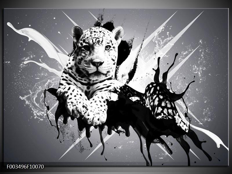 Foto canvas schilderij Dieren | Zwart, Wit, Grijs