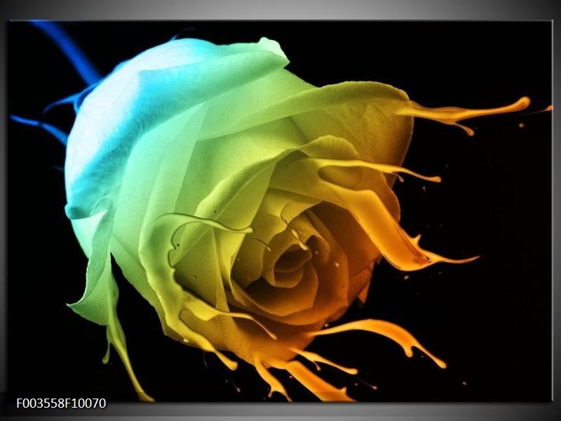 Glas schilderij Roos | Groen, Blauw, Oranje