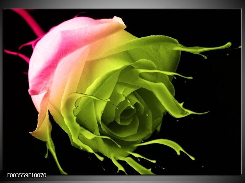 Foto canvas schilderij Roos | Roze, Groen, Zwart